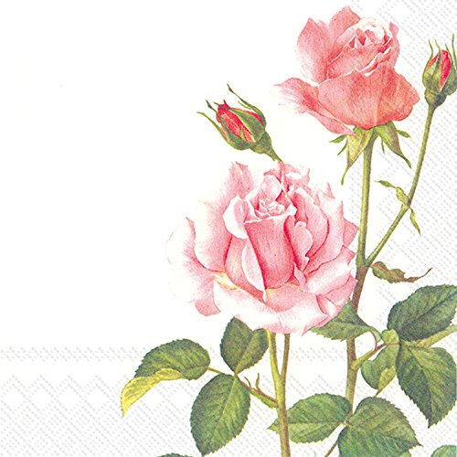 Rose For 20 A Range Home You Luncheon Napkins Paper Ideal Count qMVpGUSz
