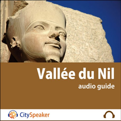 Vallée du Nil audiobook cover art