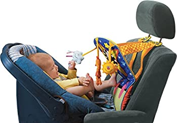 infant car seat toys