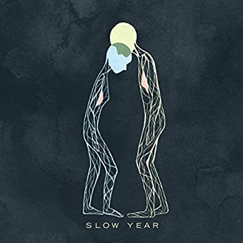 Slow Year