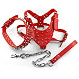 Kuntrona Leather Dog Harness Spiked Studded Dog Pet Collar Harness and Chain Leash Set for Medium Large Xlarge Breeds Pitbull Mastiff Red L