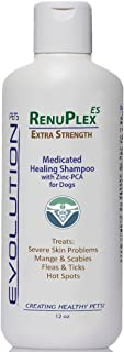 Medicated Dog Mange Shampoo. Antifungal RenuPlex Extra Strength Mange Shampoo for Dogs Eliminates Mange, Dog Mites, & Scabies. All Natural Antifungal dog shampoo. Unconditional Guarantee. Made in USA