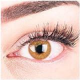 """Sehr stark deckende und natürliche braune Kontaktlinsen SILIKON COMFORT NEUHEIT farbig """"Jasmine Brown"""" + Behälter von GLAMLENS - 1 Paar (2 Stück) - DIA 14.00 - ohne Stärke 0.00 Dioptrien"""