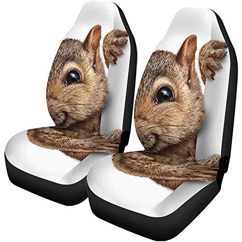 TABUE 2 stuks autostoelhoezen eekhoorns houden lege tekens realistische bontjes en poten als stoelbeschermer, geschikt voor auto, SUV limousine, vrachtwagen