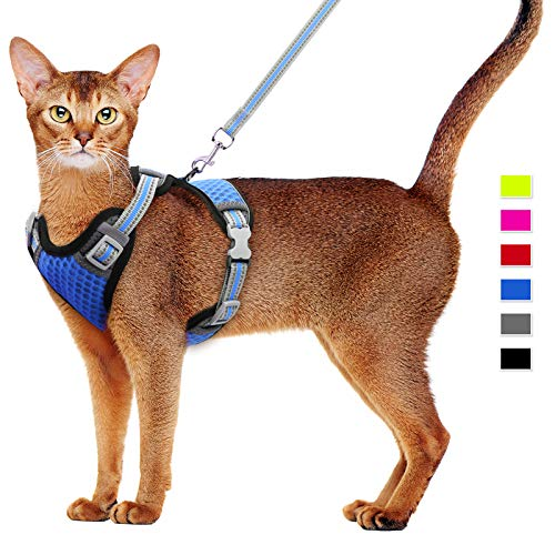 Juego de arnés y Correa para Gatos Arnés para Gatos Arnés de Malla Suave Arnés para Chaleco Ajustable para Gatos con Correa Reflectante
