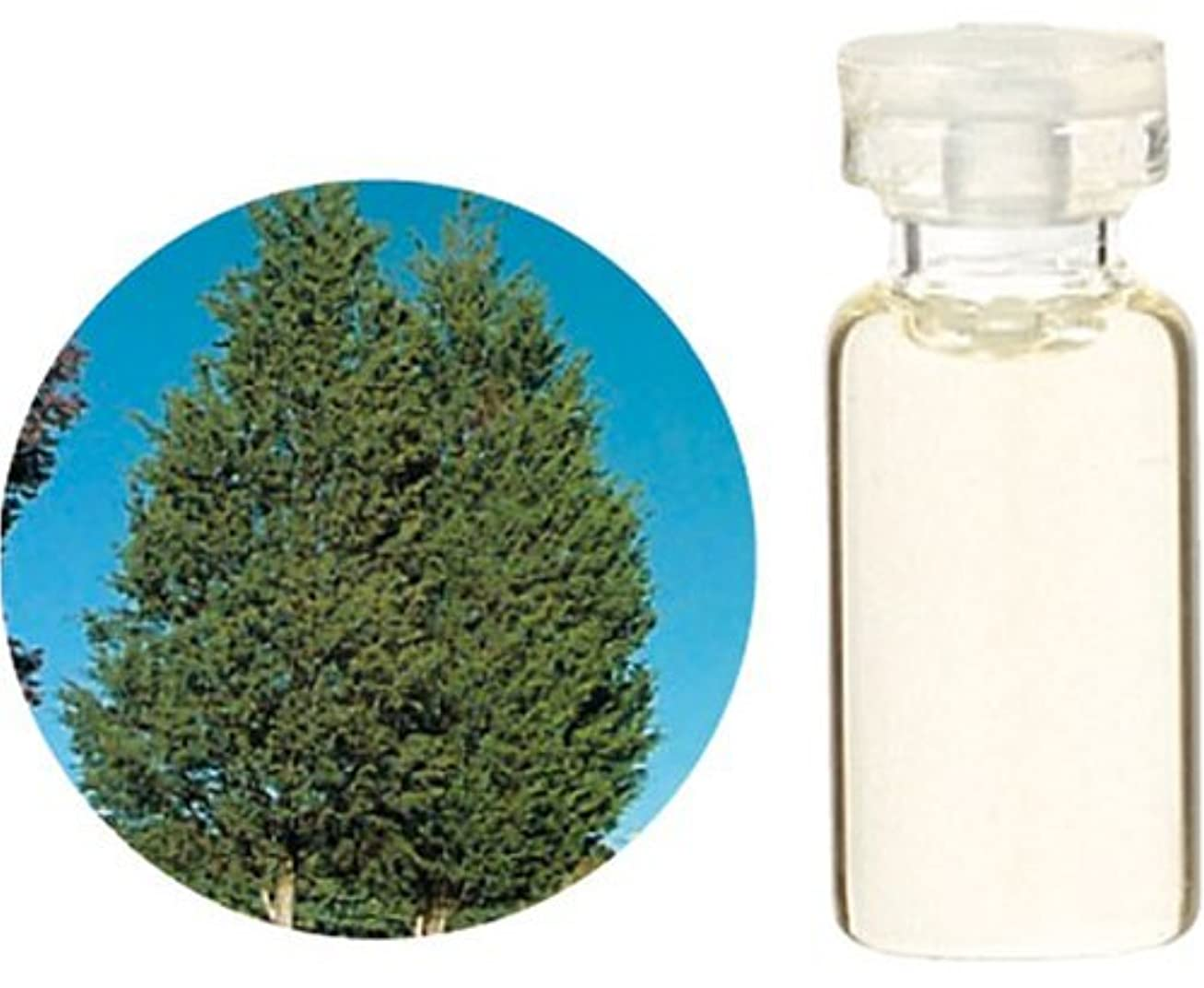 残高突進織る生活の木 C シダーウッド バージニア エッセンシャルオイル 10ml