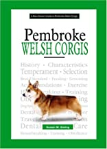 A New Owner's Guide To Pembroke Welsh Corgis