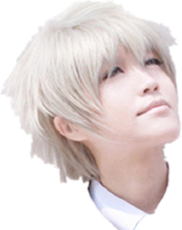 Final Fantasy 13 Hope Cosplay Costume Wig