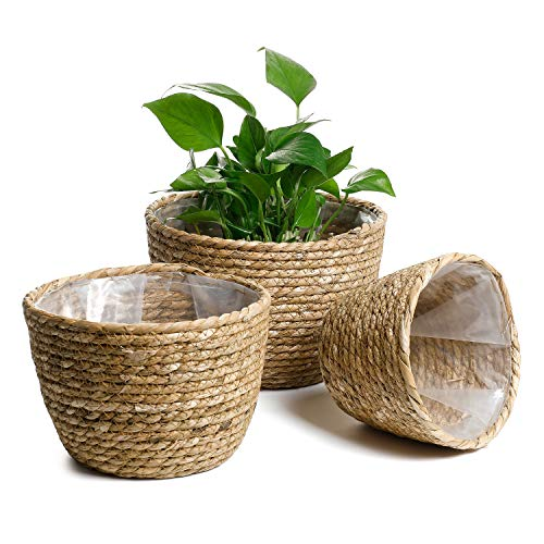 POTEY 740101 Seagrass Planter Basket - Set of 3 Hand Woven Basket Indoor Outdoor Storage Flower Pot Cover Containers with Waterproof Plastic Liner for Modern Home Decor(Seagrass Brown)