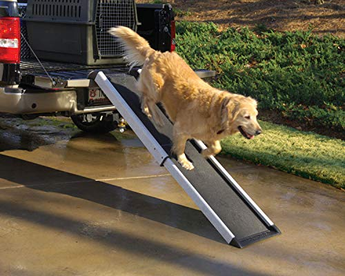 PetSafe Solvit Mr. Herzher's Smart Ramp