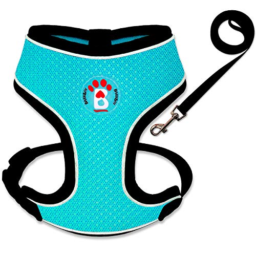BARKBAY Reflective Breathable Soft Air Mesh No Pull Puppy Dog Vest Harness(Blue,S)
