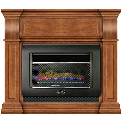 Duluth Forge DF300L-M-TA Mini Hearth Ventless Gas Wall Fireplace-26,000 BTU, T-Stat Control, Toasted Almond Finish