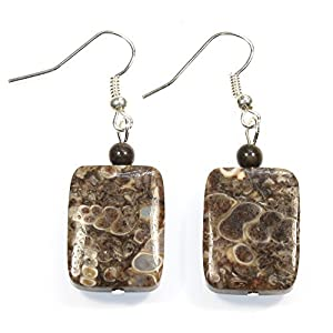 Brown Turritella Fossil Agate Natural Stone Earrings