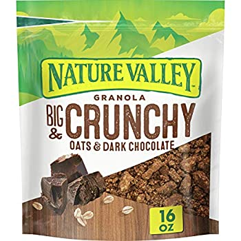 Nature Valley Granola Protein Oats and Dark Chocolate 16 oz