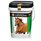 Perfect Products, Equine Perfect Prep EQ Training Day