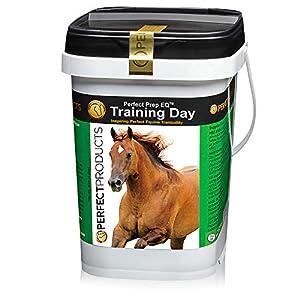 Perfect Prep EQ Training Day