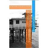 CONTOS DE UM CONTADOR DE HISTÓRIAS: HORA DE CALAR E OUVIR (Portuguese Edition)