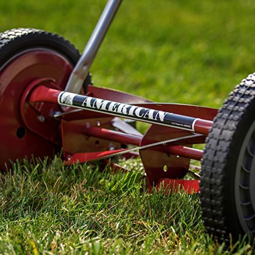American Lawn Mower Company 1304-14 14-Inch 5-Blade Push Reel Lawn Mower