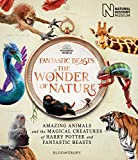 Fantastic Beasts. The Wonder Of Nature: Amazing Animals and the Magical Creatures of Harry Potter and Fantastic Beasts