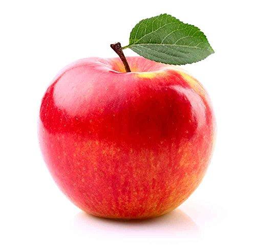 Gala Royal Äpfel Neue Ernte Deutschland 6 Stück/Packung