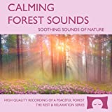Calming Forest Sounds - Nature Sounds Recording - For Meditation, Relaxation and Creating a Soothing...