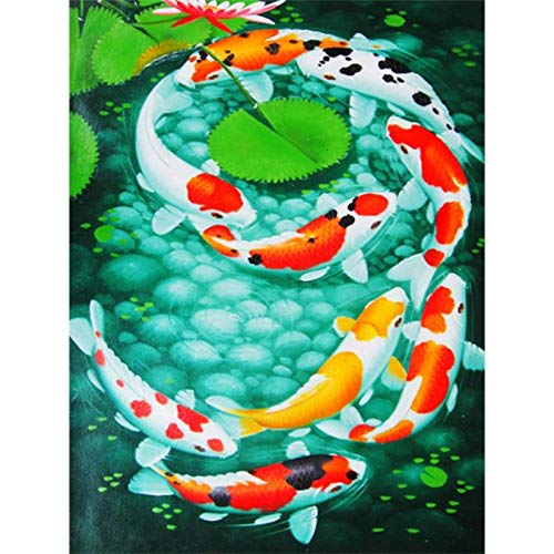 DIY Diamond Painting, Crystal Rhinestone Diamond Embroidery Pictures Arts Craft for Home Wall Decor Koi Fish and Lotus Leaves 19.7x27.6 in by Lazodaer