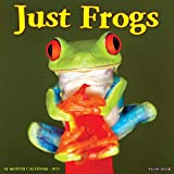 Just Frogs 2021 Wall Calendar