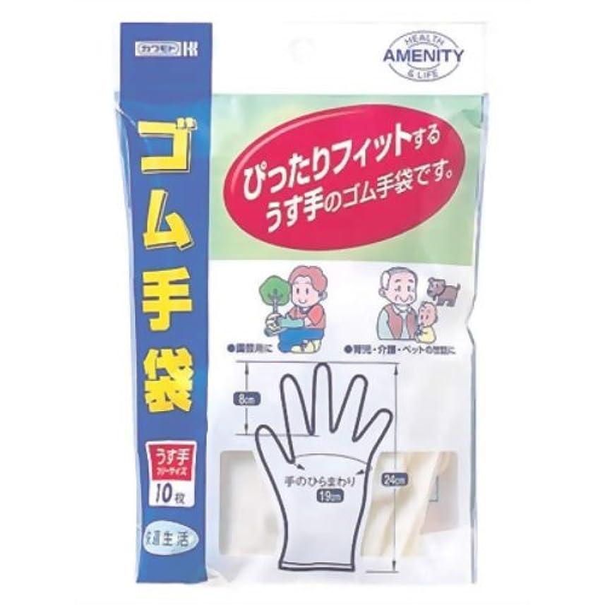 モンスターエンドテーブル基礎理論カワモト ゴム手袋 10枚