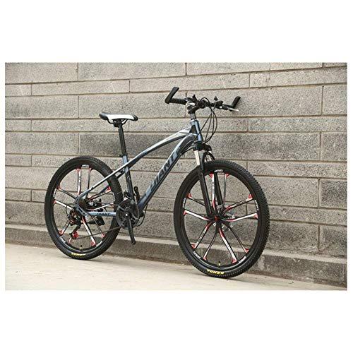 CENPEN Deportes al Aire Libre 26 '' HighCarbon Bicicleta de montaña de Acero con 17 '' de Doble Freno de Disco Frame 2130, Colores múltiples plazos de envío (Color : Grey, Size : 30 Speed)