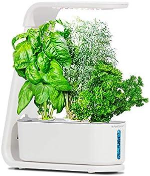 AeroGarden White Sprout