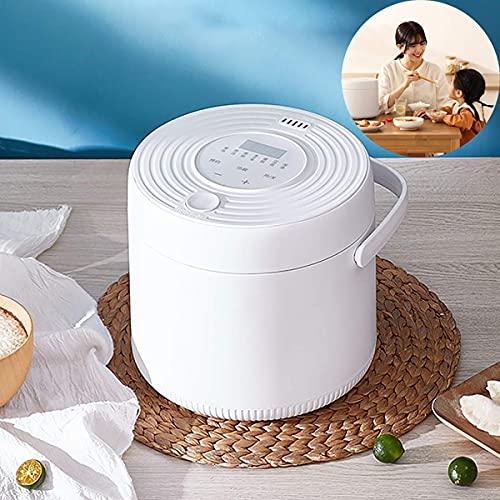 Olla arrocera multifunción 2L Mini olla arrocera 400W Horno eléctrico Fiambrera Calentador de alimentos multifunción portátil para cocinar arroz, gachQF de avena, huevos nutritivos, B