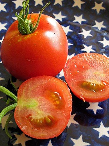 Robuste rote Freilandtomate 'Hellfrucht' (Solanum lycopersicum) Bio 20 Samen