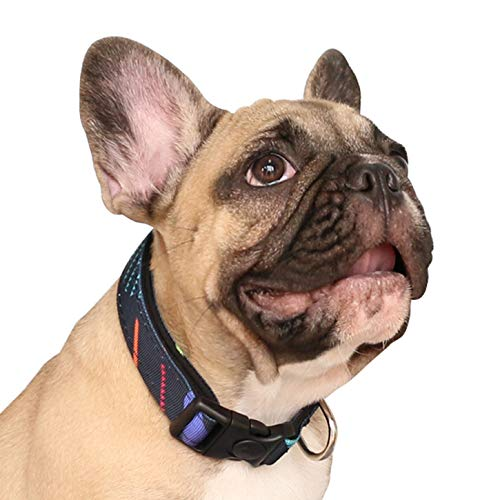 iChoue Pet Dog Soft Comfy Collar Neoprene Padded Adjustable Pretty Pattern Design Nylon Collars Wide 1' Long 18'-26' for Medium Large Dogs - Colorful Stripe Size L