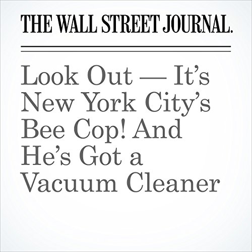 Look Out — It's New York City's Bee Cop! And He's Got a Vacuum Cleaner copertina