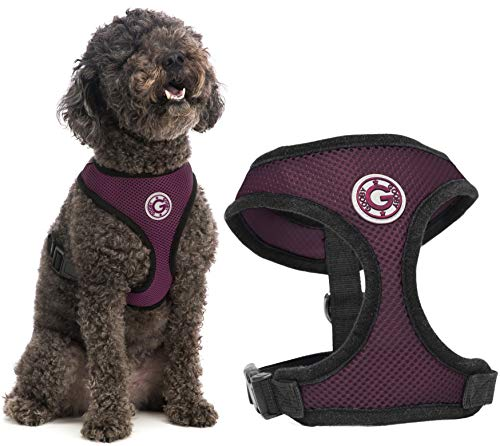Gooby Dog Harness - Purple, Large - Soft Mesh Head-in Small Dog Harness with Breathable Mesh - Perfect on The Go Mesh Harness for Small Dogs or Cat Harness for Indoor and Outdoor Use