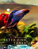 Betta Fish Tanks: Our Top Five Betta Homes (English Edition)