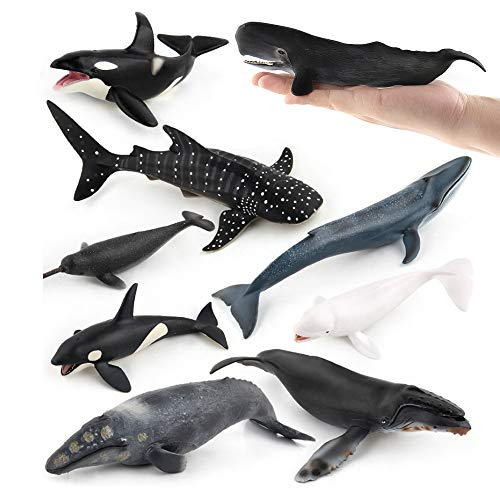 Sea Marine Animal Figures Ocean Creatures Action Models Figurine Whale Ornament Education Cognitive Toy for Boys Girls Kid 5 6 7 8 Years Old(9 pcs)