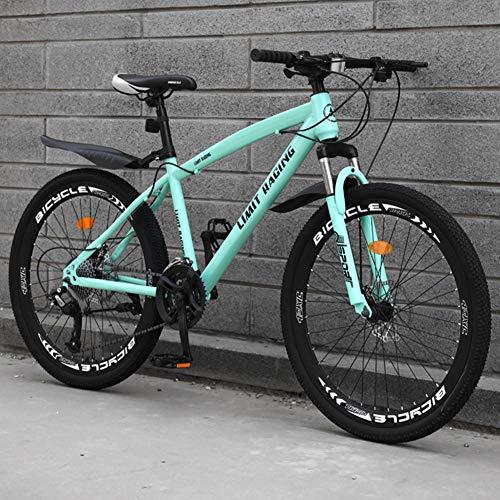 Adulti Mountain Bike, Spazi Aperti Sport Hardtail Mountain Bike Bici da Strada, Double Disc Brake Paese Cambio di Bicicletta,Blue 27 Speed,26 Inches