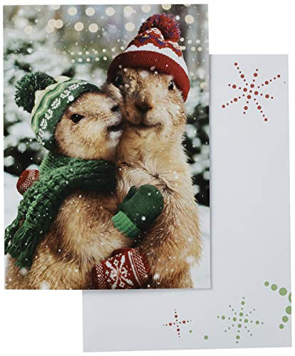 Avanti 10-Count Christmas Cards with Envelopes, Holiday Prairie Dogs