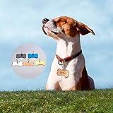 HOUSWEETY Knochen Personalisiert Haustier ID Tag Hund Tag MIT Gravur Service Hundemarke Anhaenger aus Edelstahl,Silber - 6
