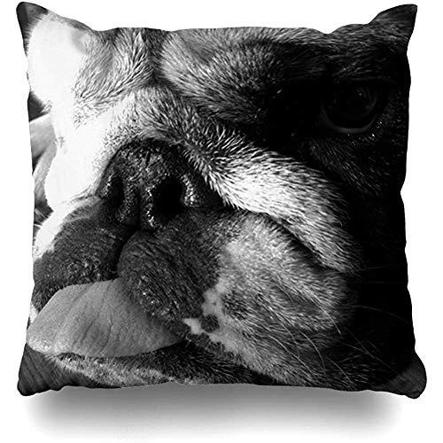 LOVE GIRL Fundas de cojín Fundas de cojín en Blanco y Negro Cachorro Bulldog inglés Tamaño Cuadrado al Aire Libre 45x45 cm Fundas de cojín para el hogar