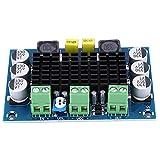 Mono-Canal de sonido 26V 100W TPA3116D2 XH-M542 Tablero amplificador de potencia digital, Módulo de audio estéreo AMP Sistema de audio Altavoces