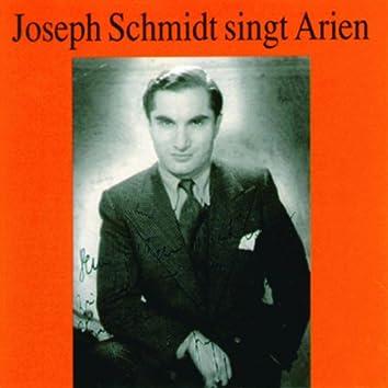 Joseph Schmidt singt Arien