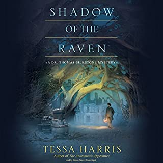Shadow of the Raven audiobook cover art
