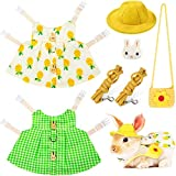 2 Sets Small Animal Harness Vest and Leash Set Small Pet Chest Harness Vest Walking Vest Harness for Rabbit Ferret Guinea-Pig Bunny Hamster Teacup Poodle Kitten (Yellow Pineapple and Green Plaid)
