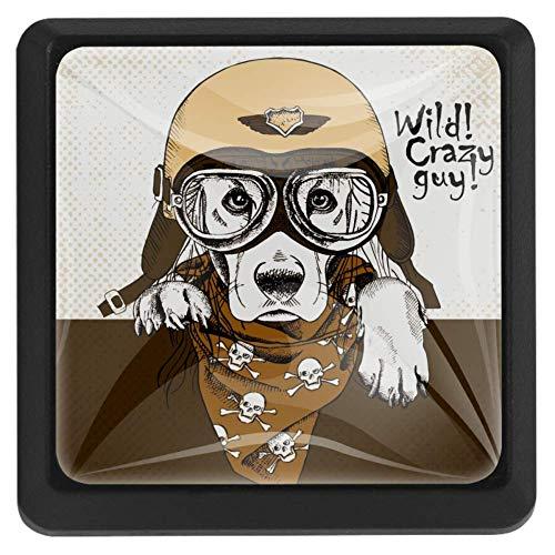 Leger Hoed Schedel Sjaal Bulldog Lade Knop Trek Handvat Kristal Glas Vierkante Vorm Kast Trekken Kast Knopen met Schroeven voor Thuis Kast Kast Kast Kast 3 Stuks