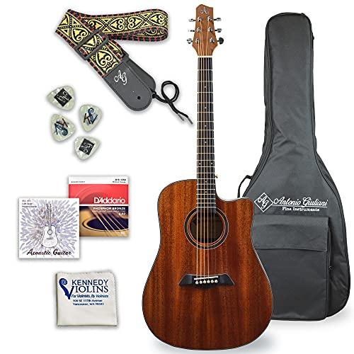 Antonio Giuliani Acoustic Guitar