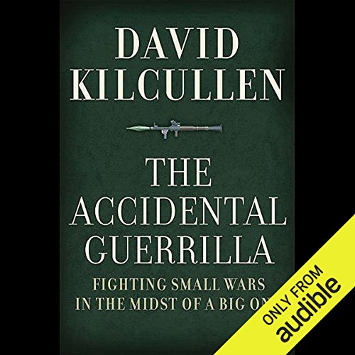 The Accidental Guerrilla cover art
