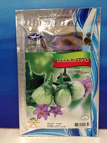 PLAT FIRM GRAINES DE GERMINATION: 2 Taschen Chia Tai Thai Grün Runde Auberginen Samen Gemüsepflanze 1 g 200 Samen