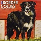 Just Border Collies 2019 Wall Calendar (Dog Breed Calendar)